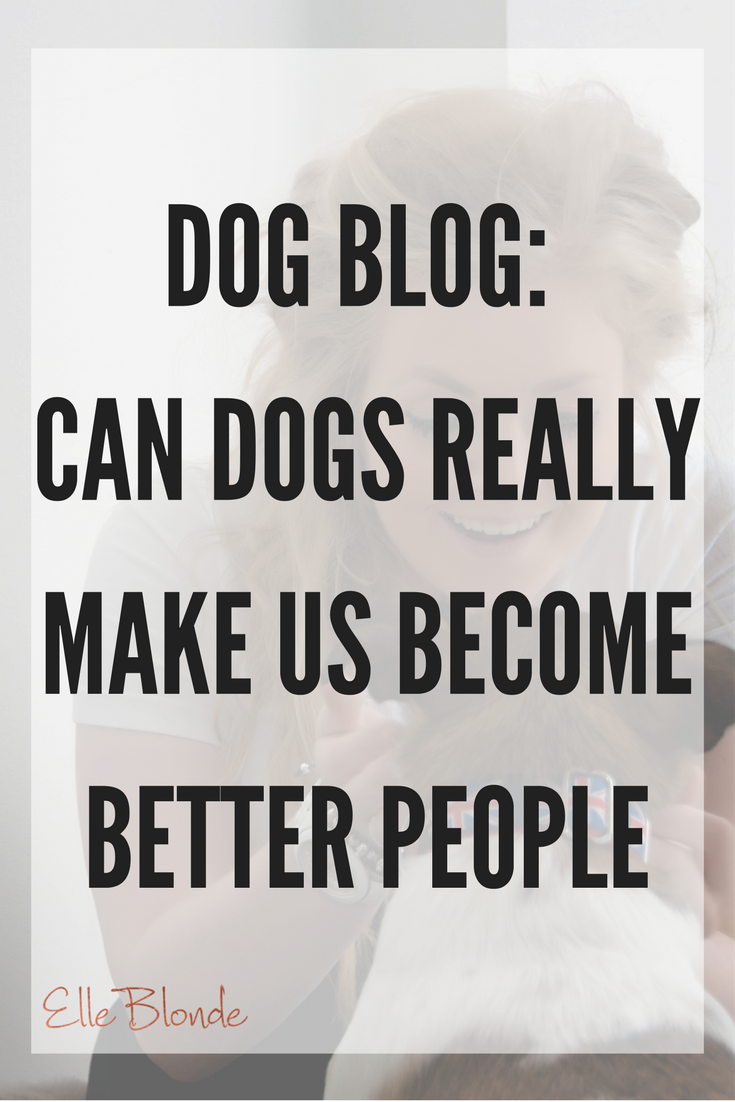 Dog Blog: My best friend & why we should all take note of our four legged friends 7