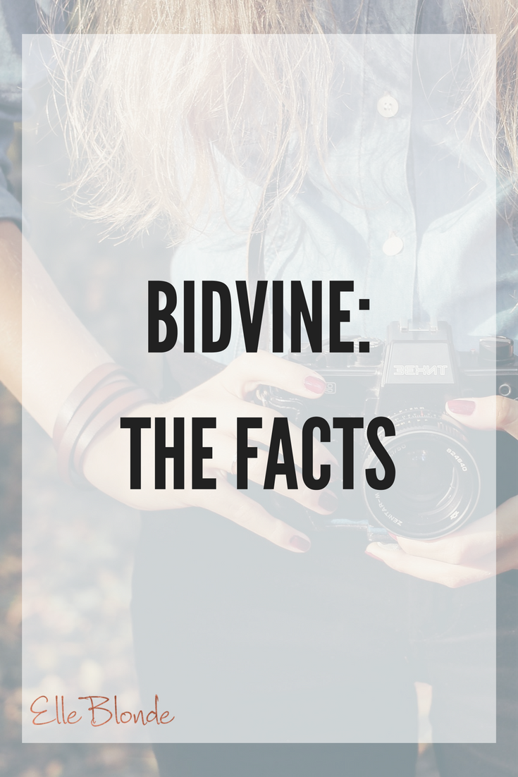 Bidvine: Why you'll never look anywhere else for a business to help you again 2
