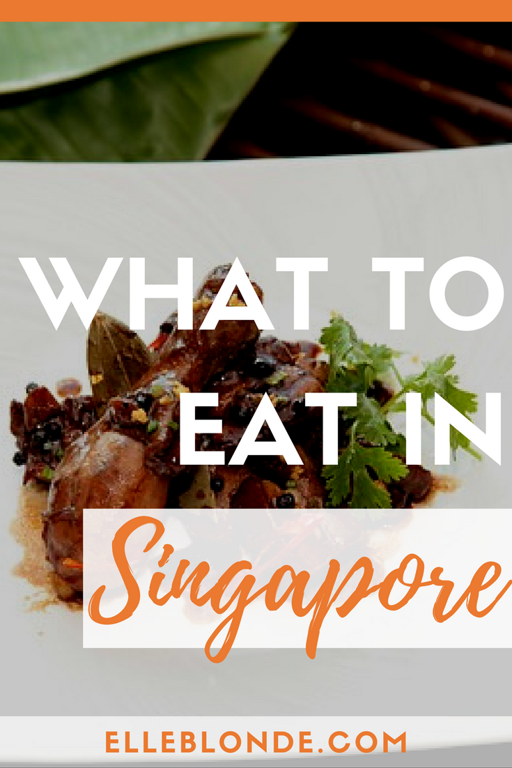 What to eat in Singapore | Traditional cuisine | Elle Blonde Luxury Lifestyle Destination Blog