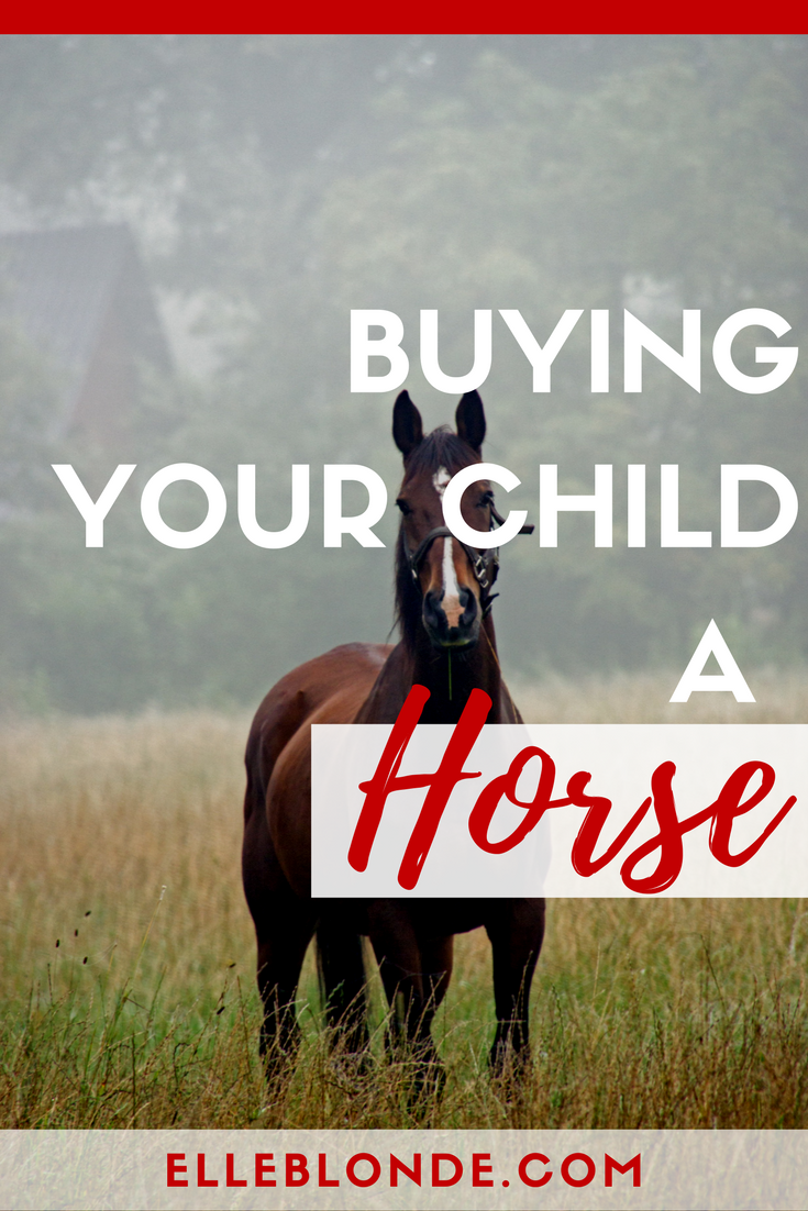 Buying your child a horse | The pros and cons | Elle Blonde Luxury Lifestyle Destination Blog