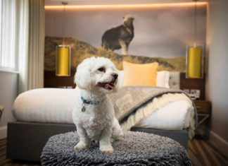 Winter in the Lake District, what to do in Keswick this Winter | Inn on the Square Dog Friendly Hotel Rooms | Elle Blonde Luxury Lifestyle Destination Blog