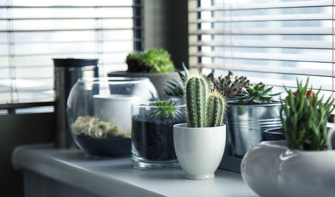 2019 Interior Design Trends Home Interior And Design Blog