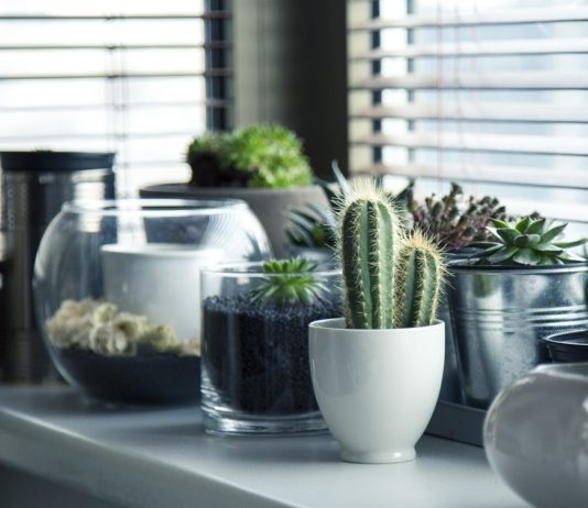 2019 Home Interior Trends   Home Decor Ideas   What is popular for 2019 home interiors   Elle Blonde Luxury Lifestyle Destination Blog
