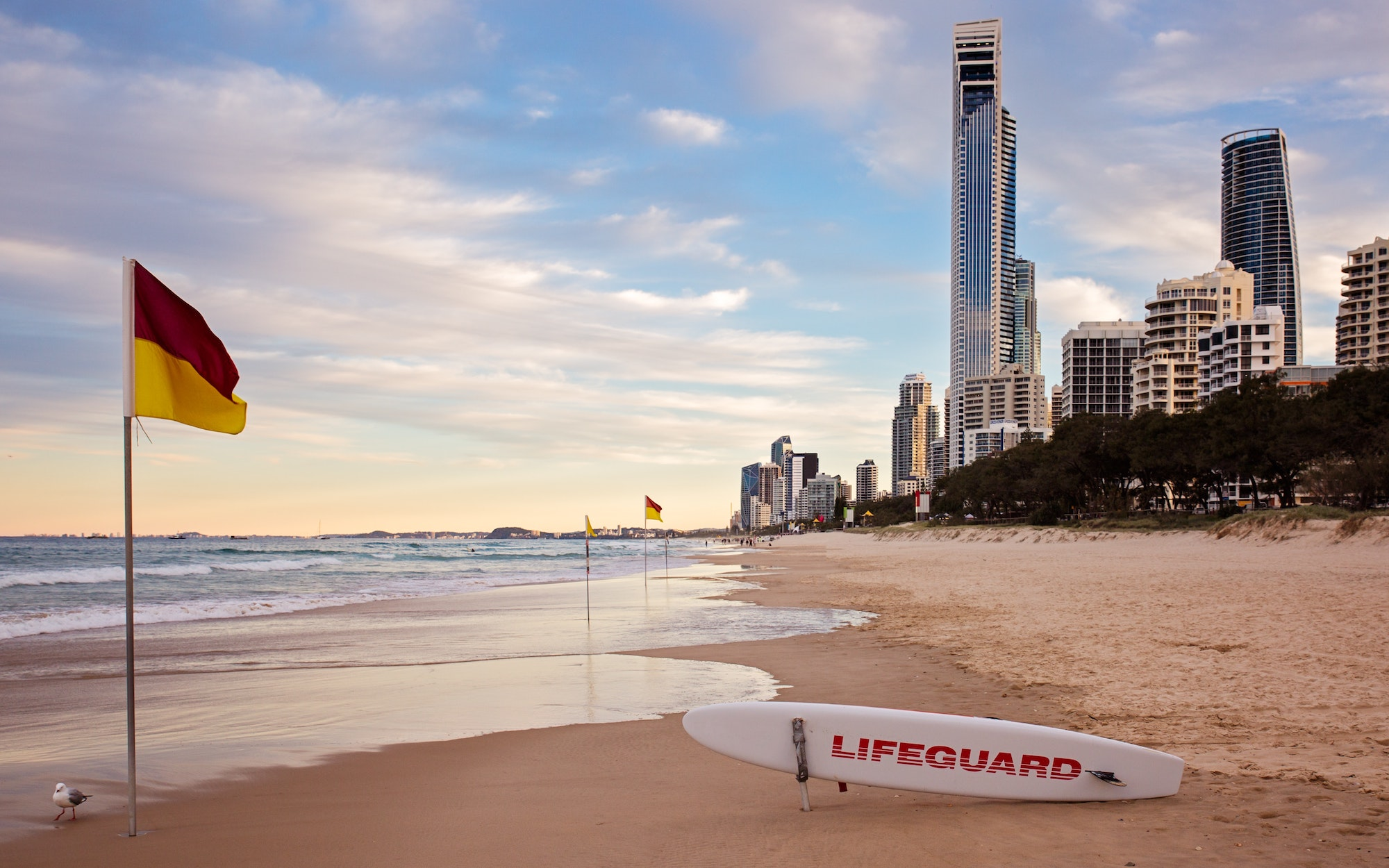 Rating Car Hire: Budget vs Avis For A Trip To The Gold Coast 1