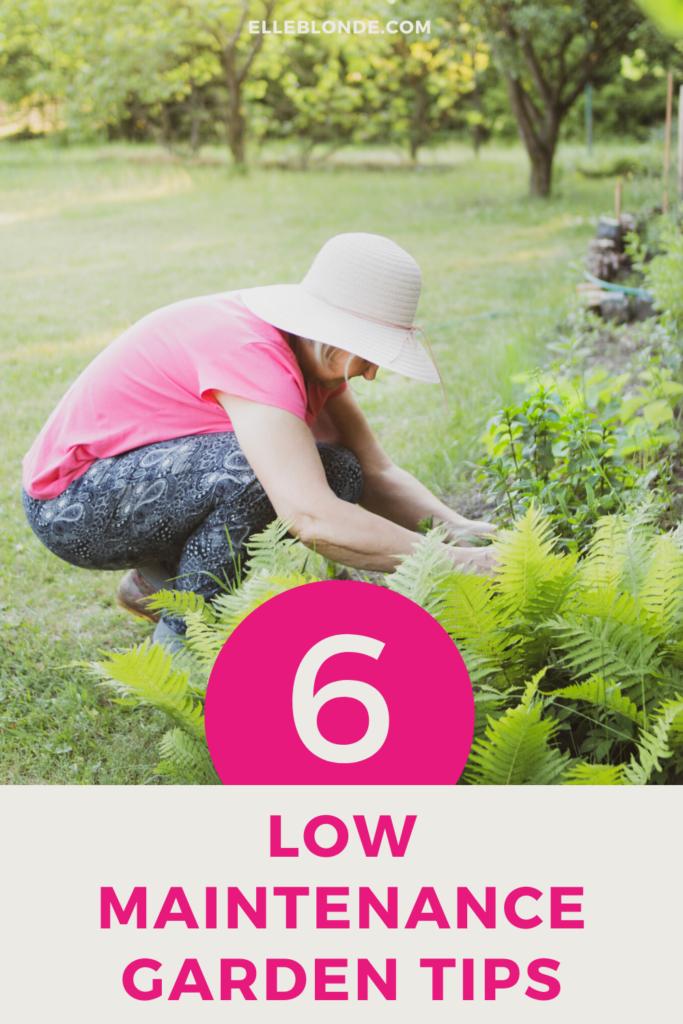 6 Ways To Create A Super Low Maintenance Garden 2