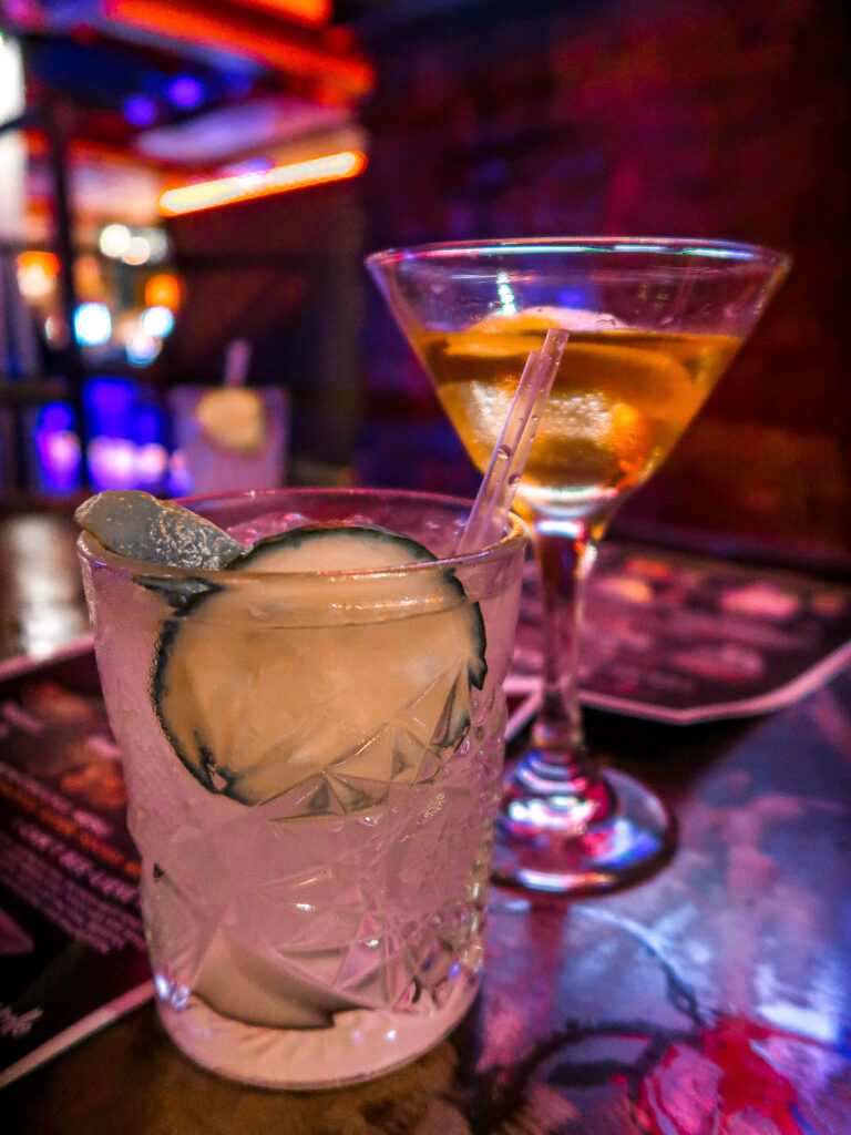 ttonic cocktails | Sunderland Restaurant Week | Where to eat in Sunderland | Elle Blonde Luxury Lifestyle Destination Blog