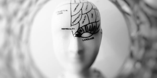 3 Reasons Why Neuroscience Psychology Is Important | Elle Blonde Luxury Lifestyle Destination Blog