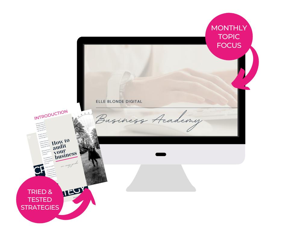 Opt In Offer Business Guide - Elle Blonde Digital