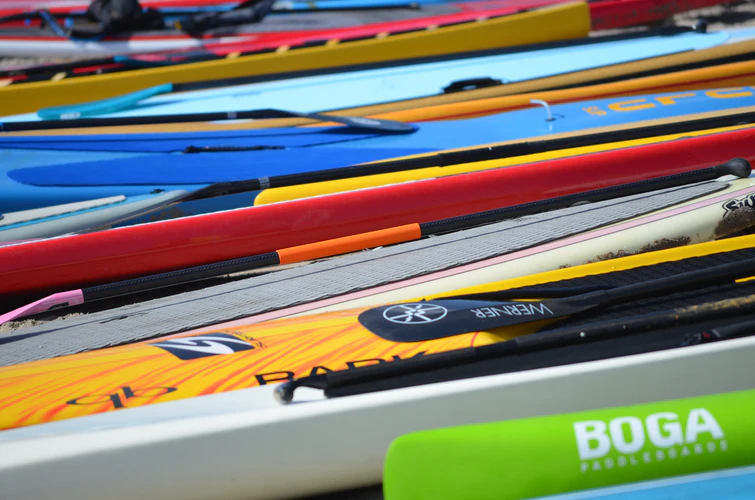 7 Essential Things You Will Need if You Want to Try Paddleboarding 2