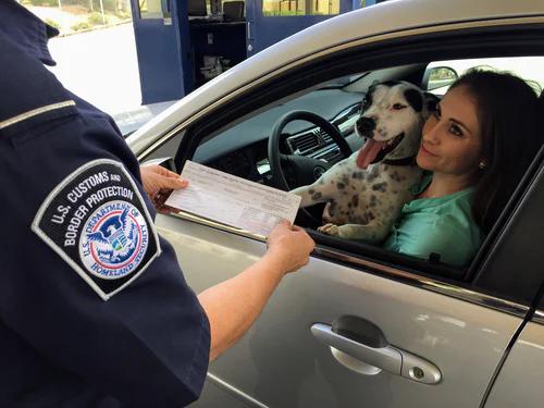 Useful Tips For Renewing Your Vehicle's Registration | Car Blog | Elle Blonde Luxury Lifestyle Destination Blog